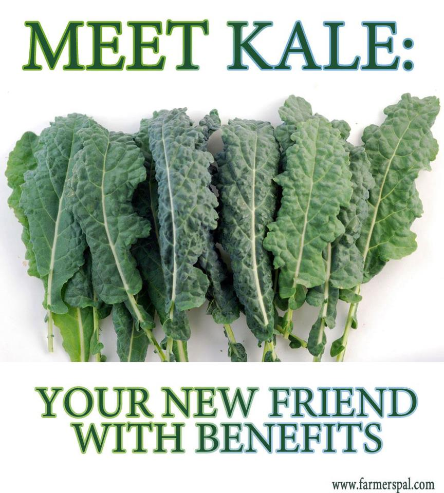 Is it safe to eat kale everyday